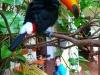 peru-bolivia-2012-413