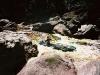 Vertikálna Amazónia II. - v útrobách kaňonu Del Diablo 1998