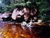 Vertikálna Amazónia II. - tvárou v tvár slepému strážcovi rieky