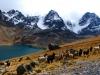 Bolívia 2013