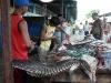 Delta Orinoco - rybý trh v Tucupite