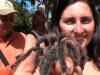 Delta Orinoco - naša malá Tarantulka