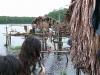 Delta Orinoco - zo života Indiánov