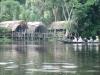 Delta Orinoco - tu bývame