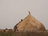 dinka dobytok dom