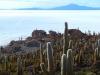 peru-bolivia-2012-370
