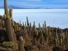 peru-bolivia-2012-371